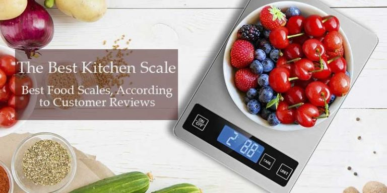 Best Food Scale for Meal Prep